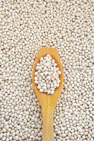 Heart-Healthy White Bean Dip Recipe