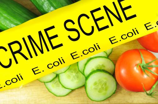 News Alert: Can E-Coli Actually Improve Your Health?