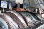 Fish mercury study