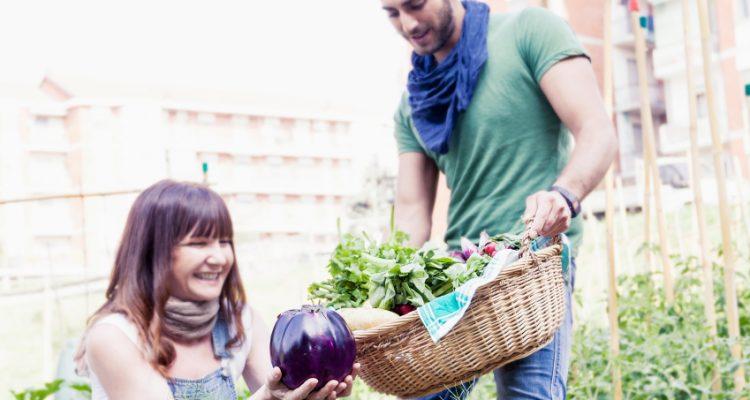 Kirsten Gillibrand, Healthy foods