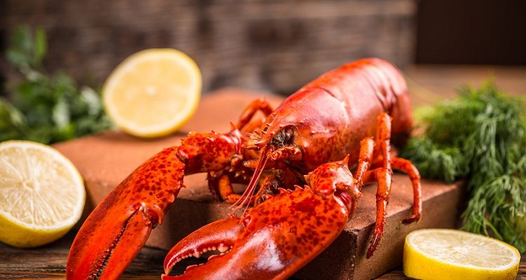 National Lobster Day