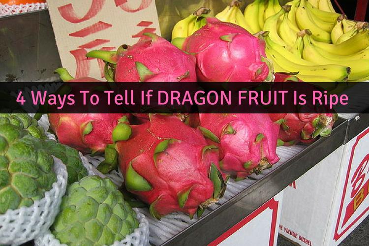 when is dragon fruit ripe fruit in season december