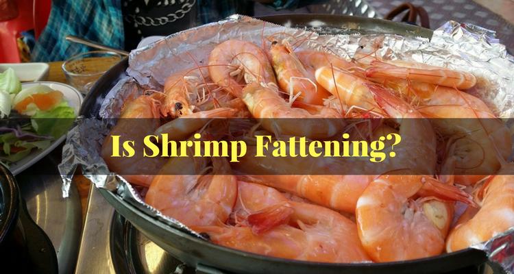 Is Shrimp Fattening