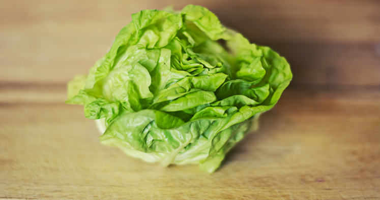 is lettuce a vegetable